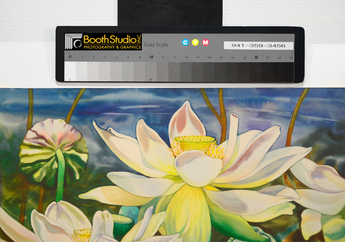 Fine art reproduction booth studio photography graphics fine art reproduction izmirmasajfo Gallery